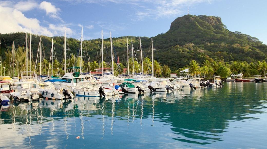 Raiatea Marina mit einem Bucht oder Hafen, Bootfahren und allgemeine Küstenansicht