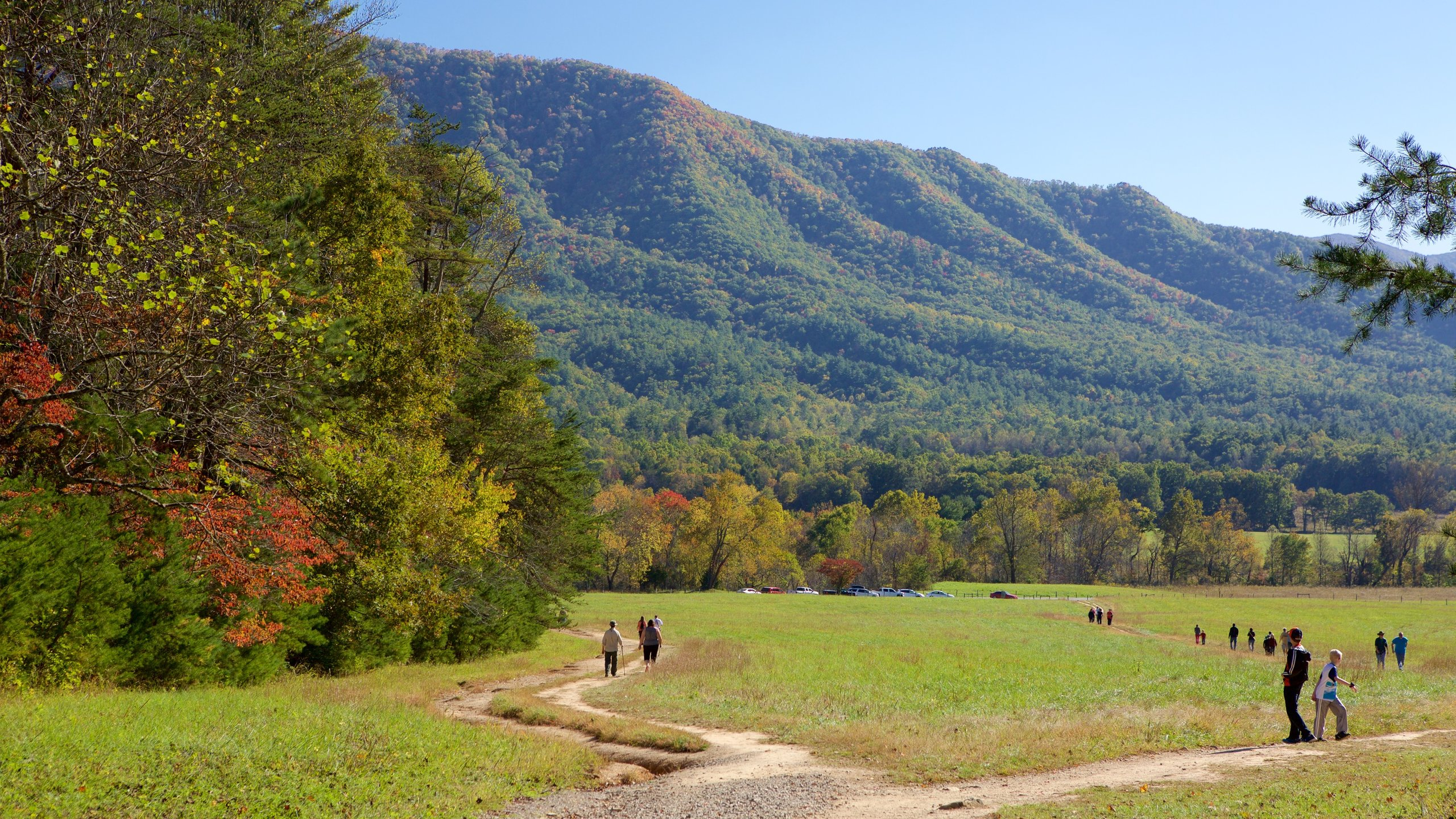 Cades Cove, Townsend, Tennessee, United States of America