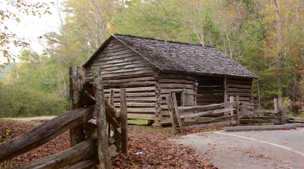 Cades Cove which includes forest scenes, a house and tranquil scenes