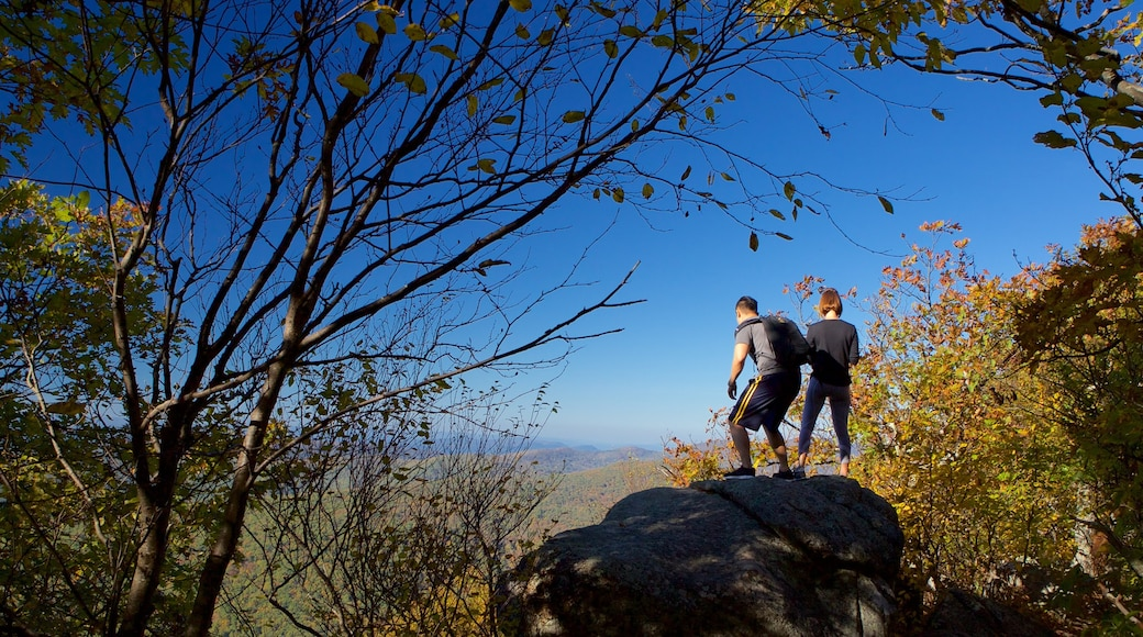 Shenandoah National Park as well as a couple