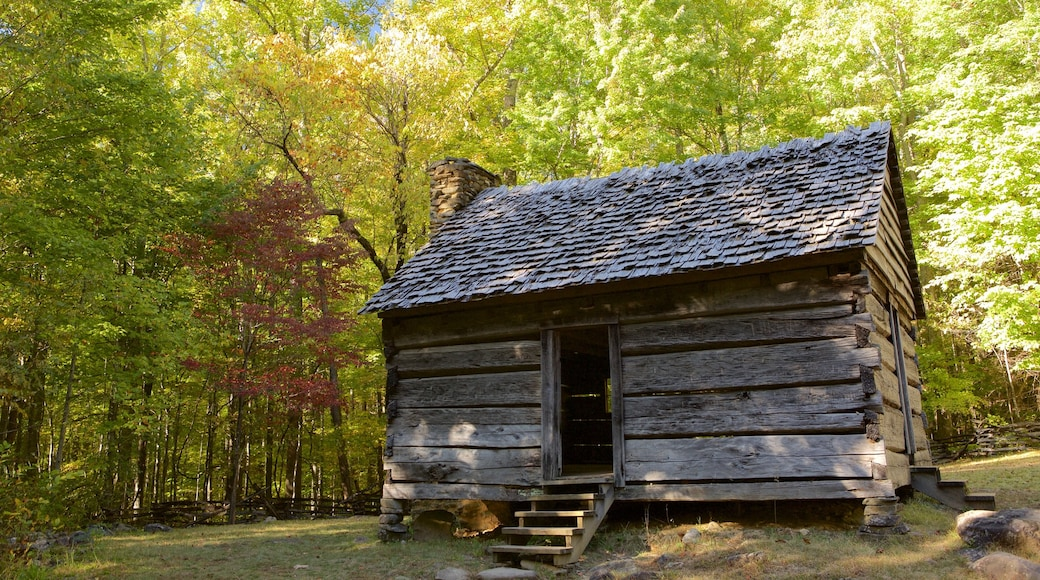 Great Smoky Mountains National Park featuring tranquil scenes, a house and forest scenes
