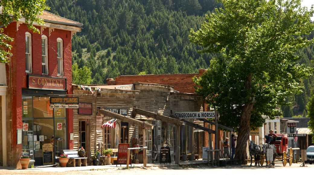 Virginia City which includes forest scenes, heritage architecture and a small town or village