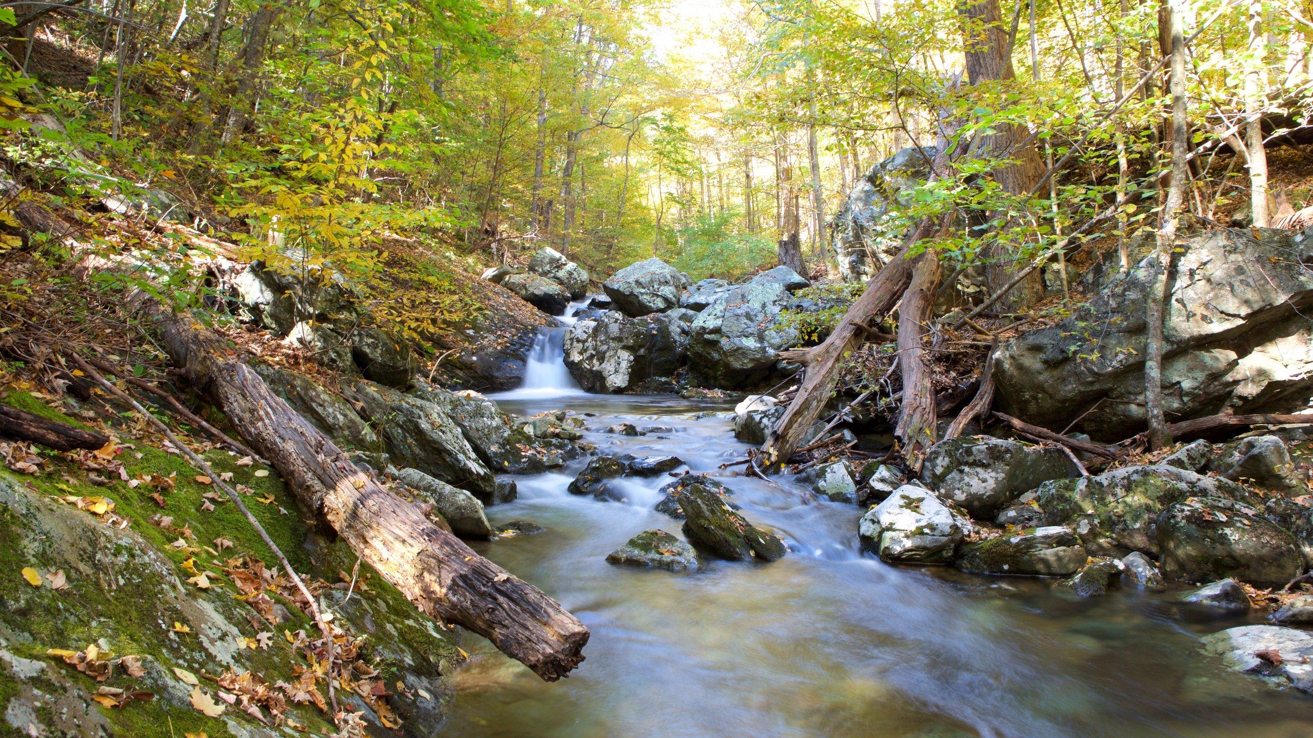 Blue Ridge Mountains, USA