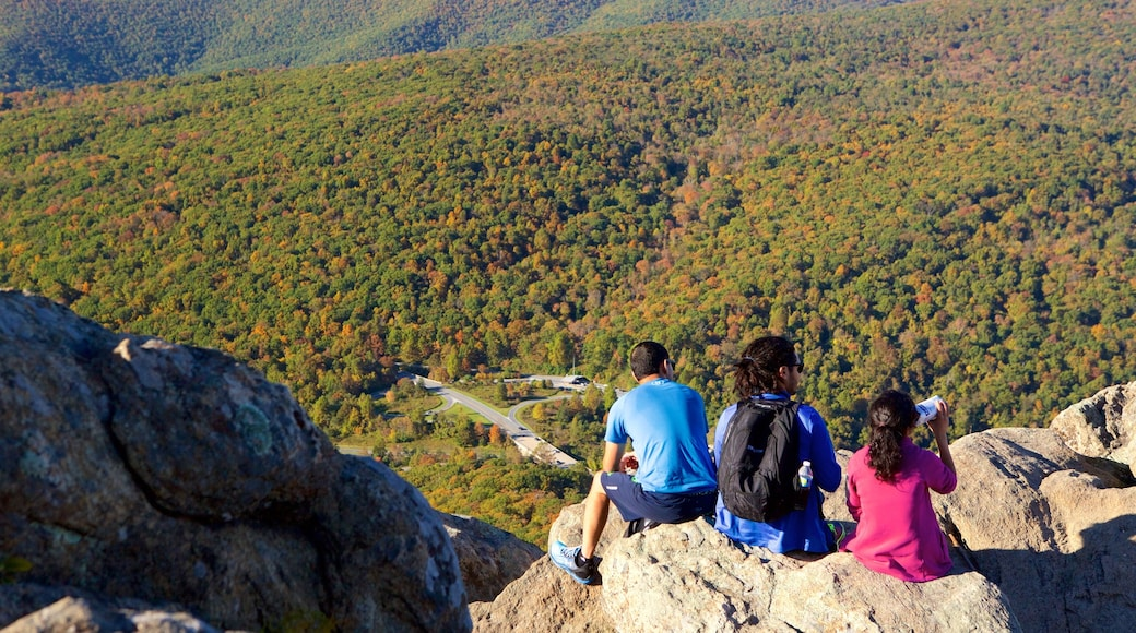 Shenandoah National Park featuring mountains, hiking or walking and forests