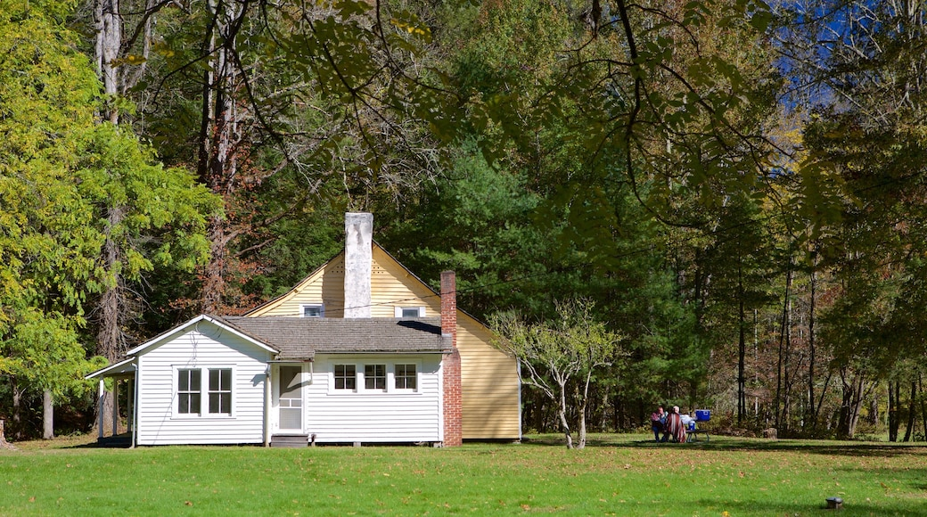 Cataloochee Valley showing a house and a garden