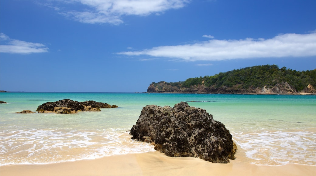 Tutukaka featuring a beach, a bay or harbour and rugged coastline