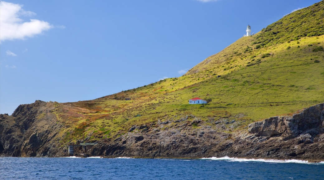 Cape Brett Lighthouse which includes a lighthouse, a bay or harbour and rocky coastline