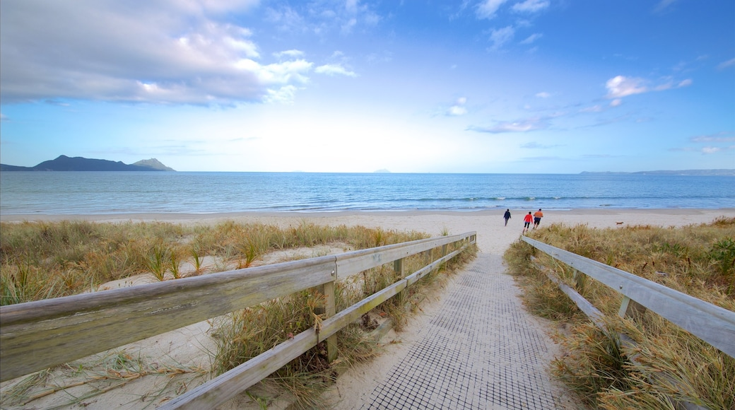 Whangarei Heads which includes a sandy beach and general coastal views as well as a small group of people