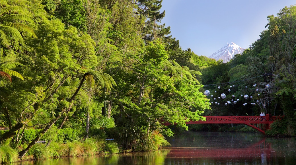 New Plymouth showing forest scenes, a river or creek and a bridge