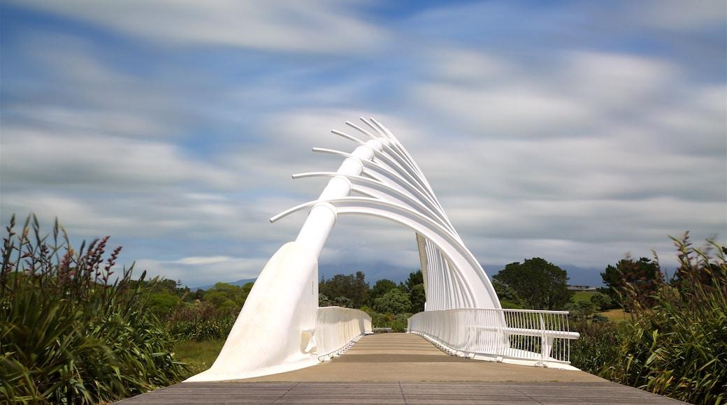 Taranaki which includes a bridge