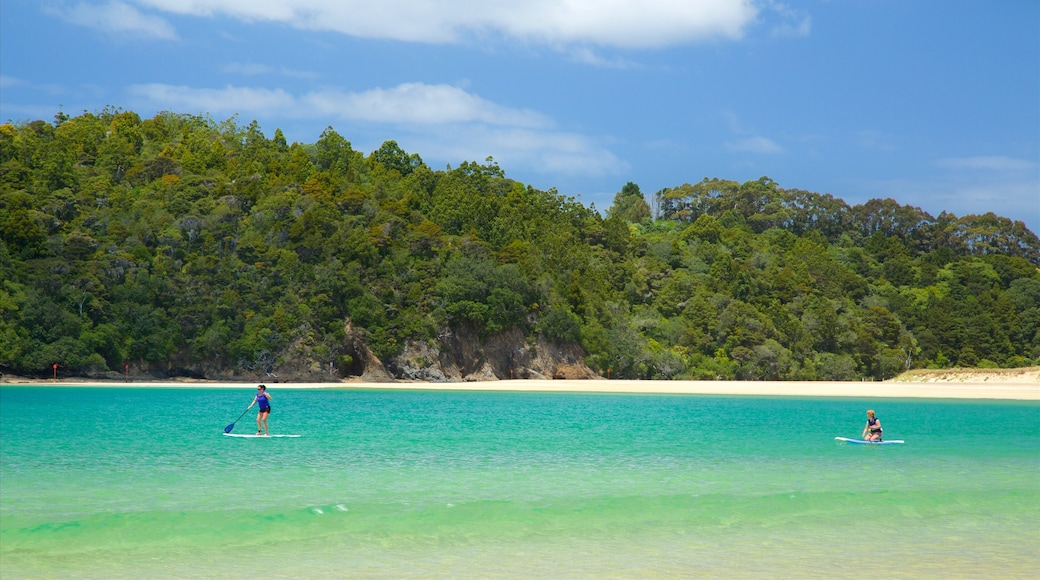 Tutukaka featuring a bay or harbour, water sports and a sandy beach