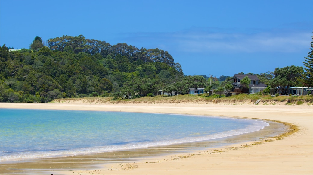 Tutukaka featuring a bay or harbour, a coastal town and a beach