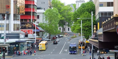 Auckland CBD showing cbd and street scenes