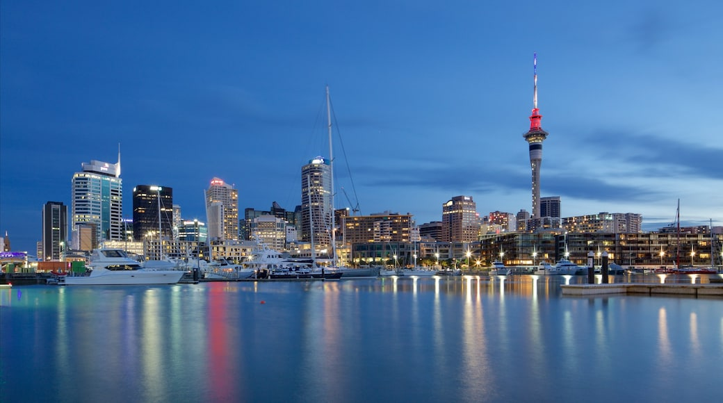 Auckland featuring night scenes, a marina and a city
