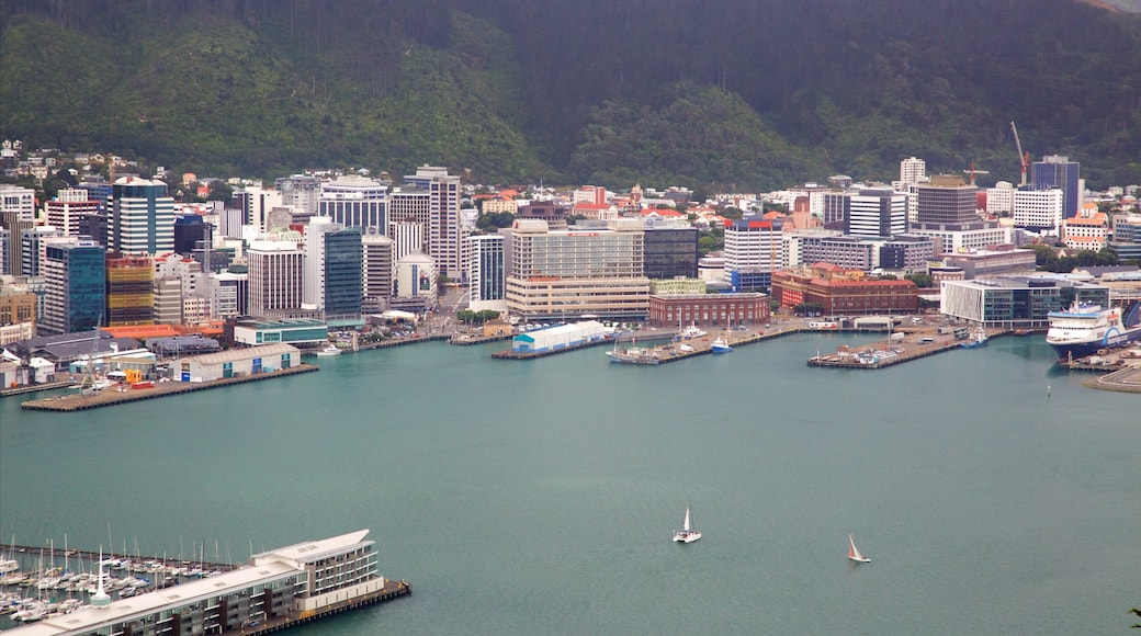 Wellington Region featuring a bay or harbor and a city