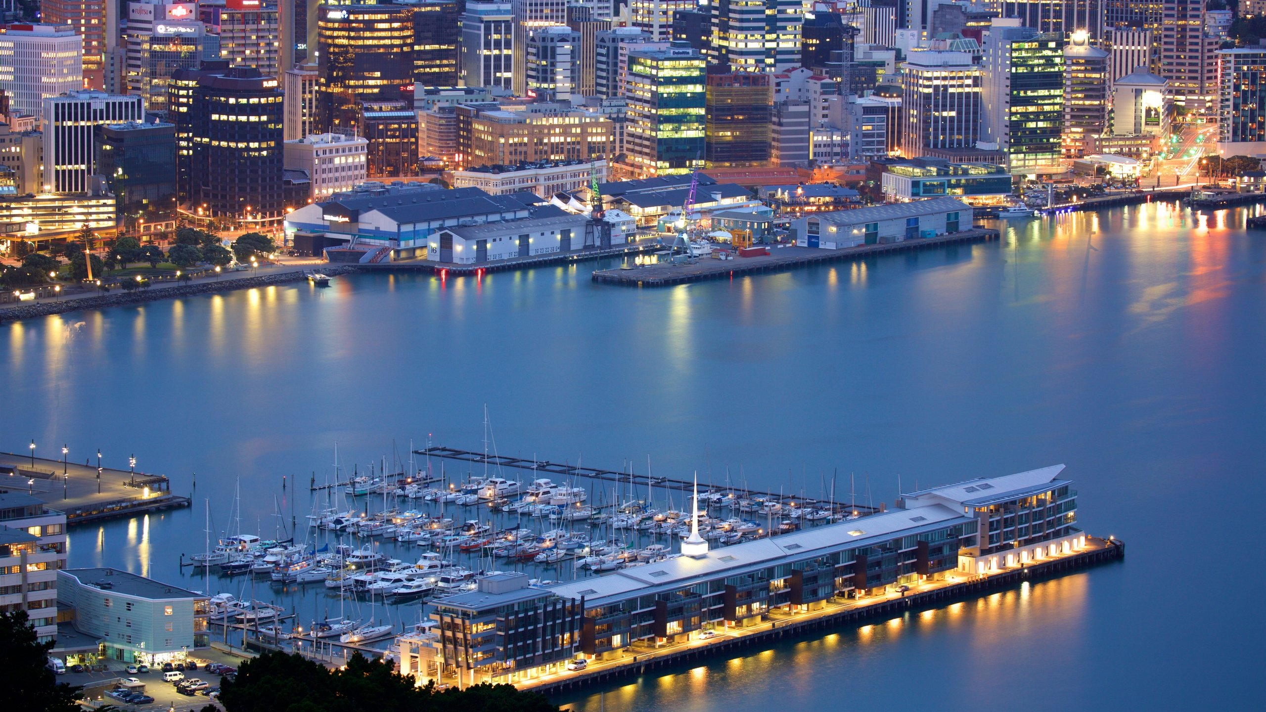 Wellington Region, New Zealand