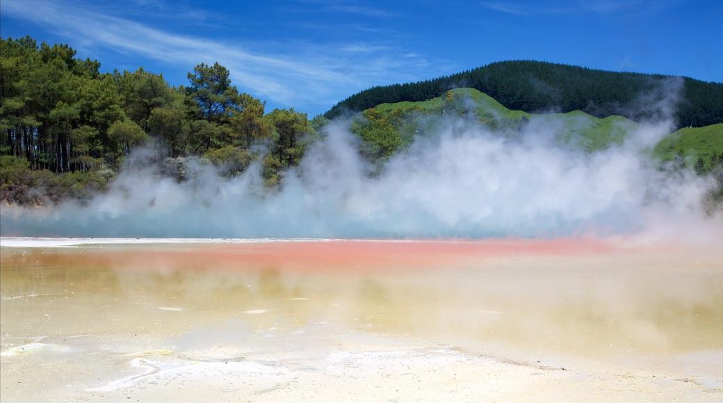 Wai-O-Tapu Thermal Wonderland joka esittää usvaa tai sumua ja kuuma lähde