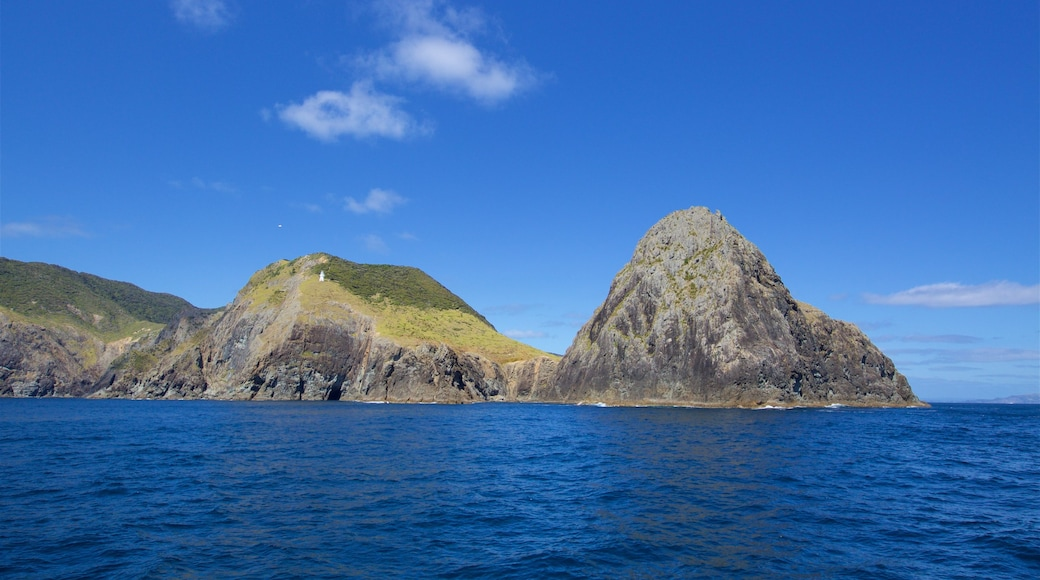 Cape Brett Lighthouse which includes rocky coastline and a bay or harbour