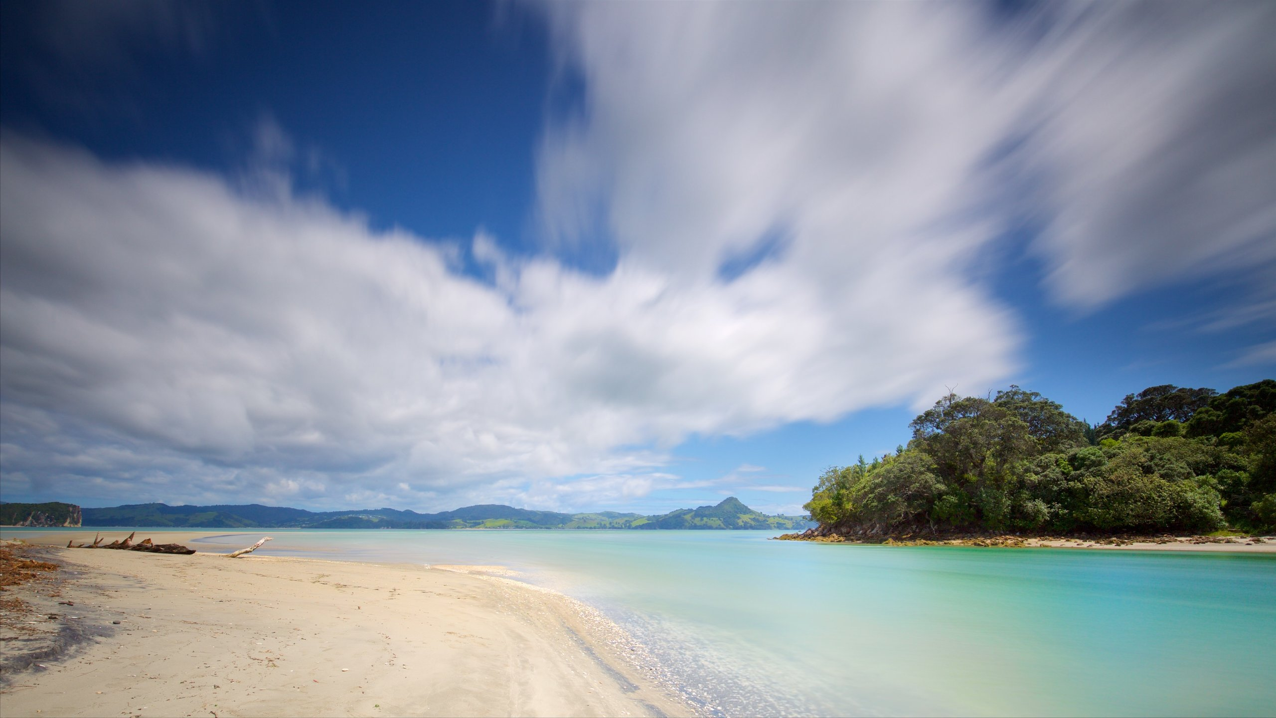 Thick forest leads down to this popular swimming beach in Mercury Bay, where explorer Captain Cook anchored in 1769.