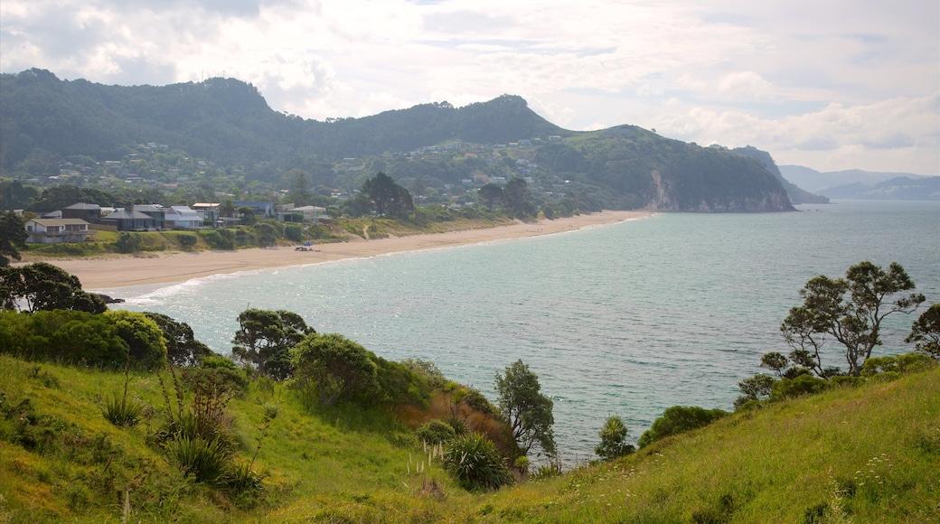 Hahei Beach showing a sandy beach, a coastal town and a bay or harbour