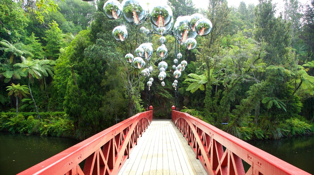 Pukekura Park which includes a lake or waterhole, a bridge and a park