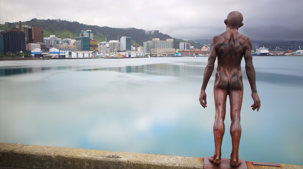 Wellington showing a bay or harbour, a city and outdoor art