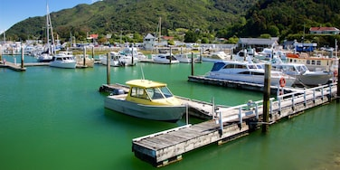 Marlborough which includes forests, mountains and a marina