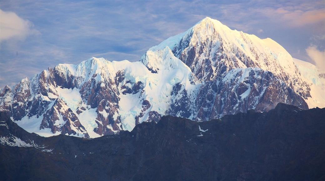 Fox Glacier featuring mountains