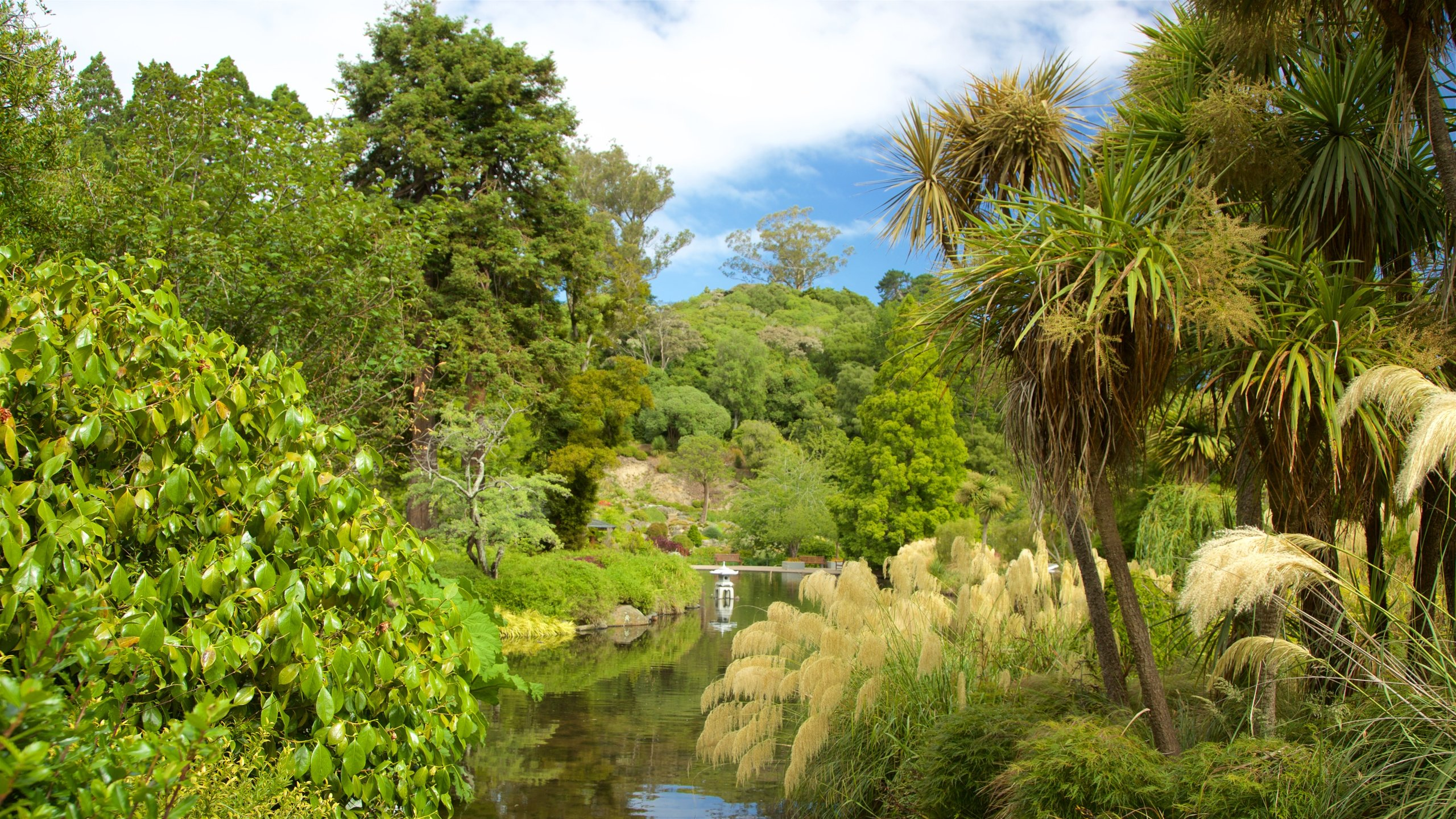 Spot native birdlife, admire thousands of colourful plant species and enjoy picnics on lush green lawns at this pretty public garden.