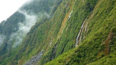 Westland Tai Poutini National Park