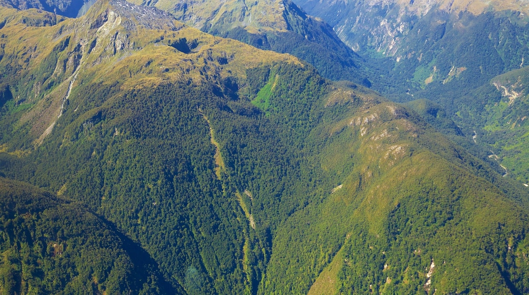 Lake Te Anau showing mountains