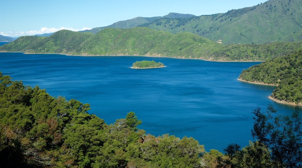 Queen Charlotte Sound which includes forest scenes, a bay or harbour and mountains