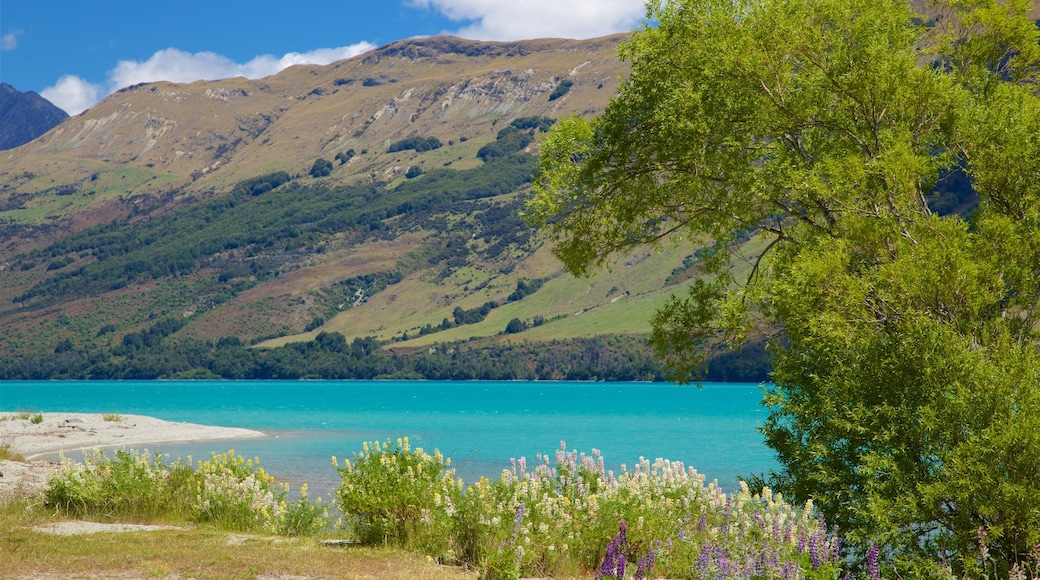 Glenorchy featuring a lake or waterhole and mountains