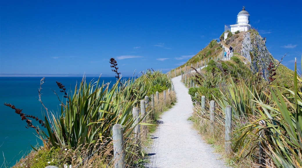 Nugget Point Lighthouse featuring rugged coastline, a bay or harbour and a lighthouse