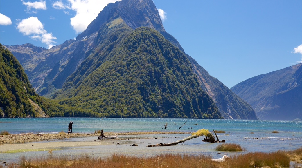 Mitre Peak featuring forests, mountains and a lake or waterhole