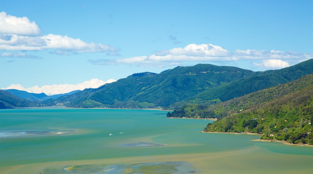 Picton showing mountains, forest scenes and a bay or harbour