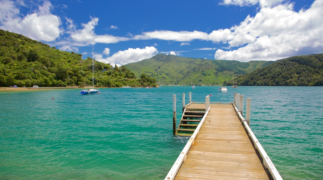 Picton featuring forest scenes, sailing and a bay or harbour