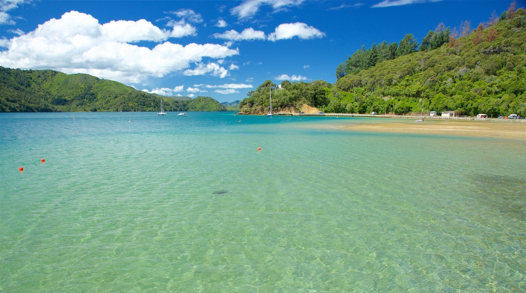 Picton featuring forests, a beach and a bay or harbour
