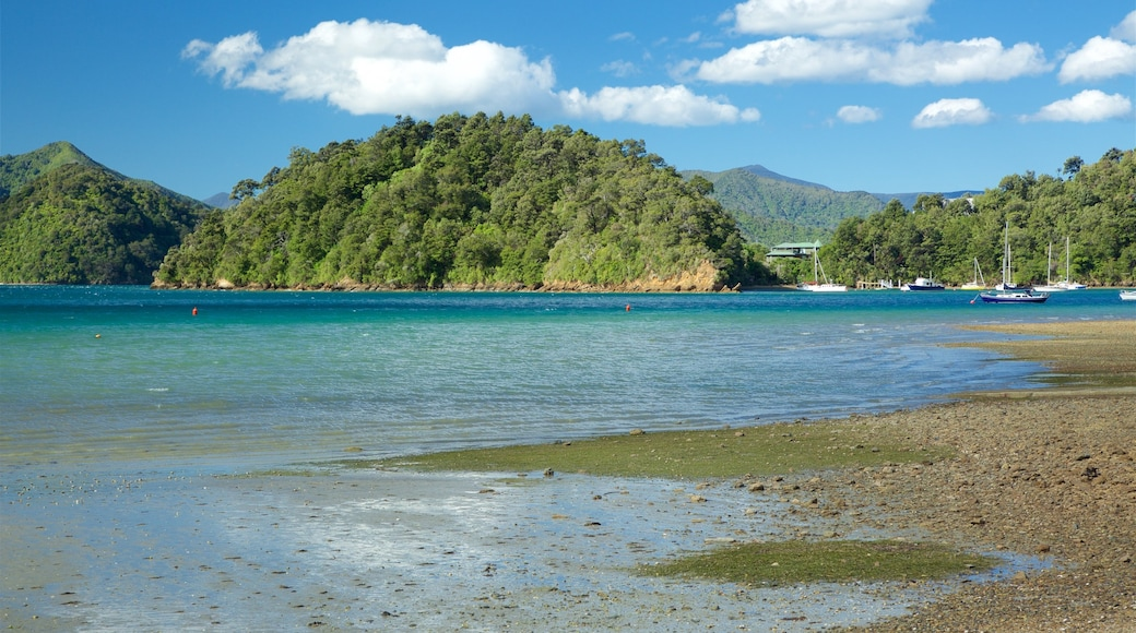 Ngakuta Bay showing a pebble beach, tranquil scenes and a bay or harbour