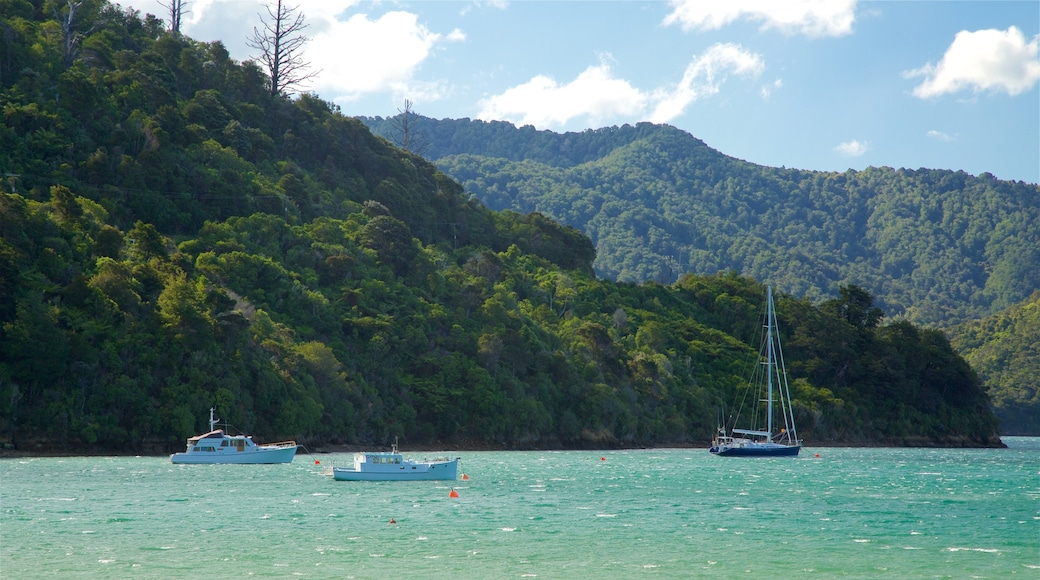 Picton showing boating, mountains and sailing