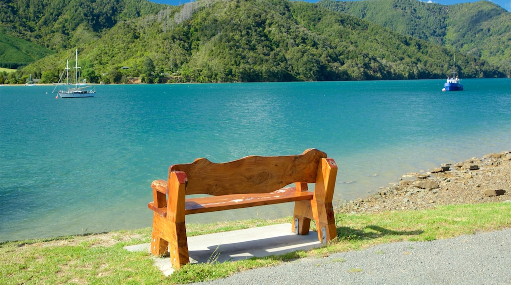 Picton which includes a pebble beach, a bay or harbour and mountains