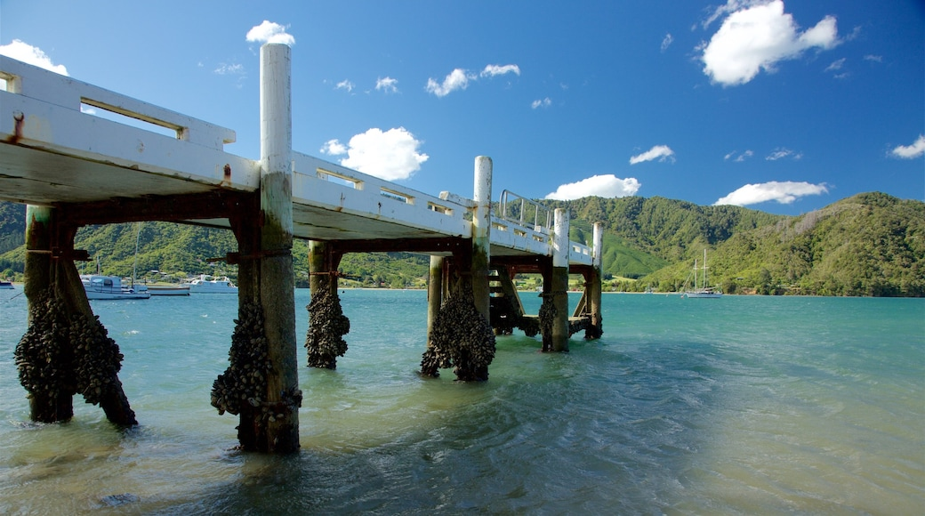 Picton featuring a bay or harbour, forests and mountains
