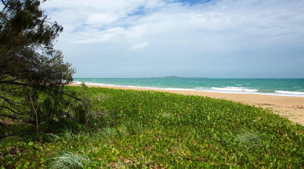 格拉德斯通 呈现出 海浪, 沙灘 和 綜覽海岸風景