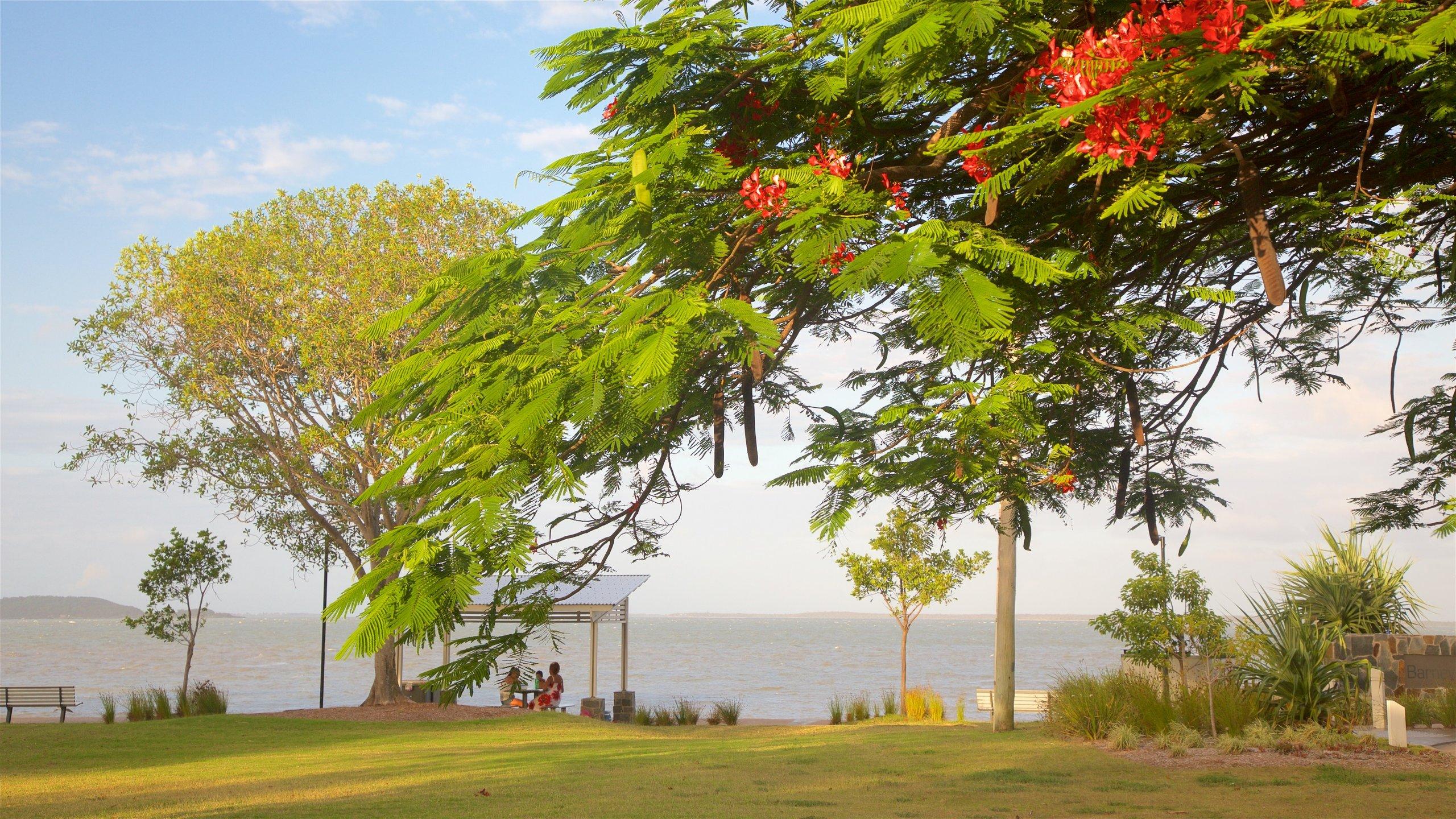 Barney Point, Gladstone, Queensland, Australia