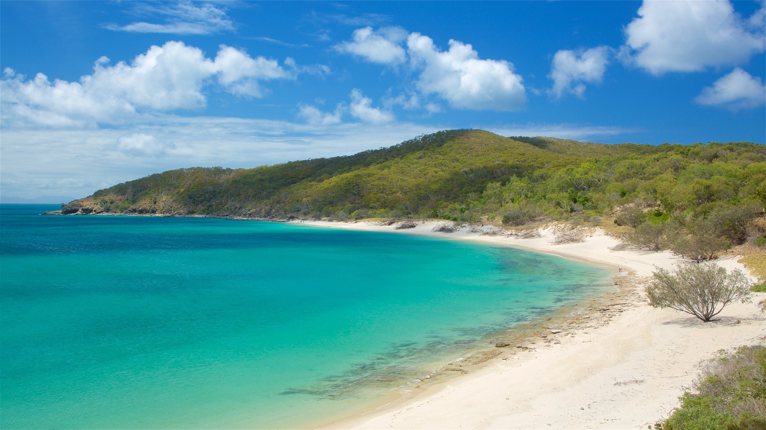 Great Keppel Island Hotels for 2020 FREE cancellation on