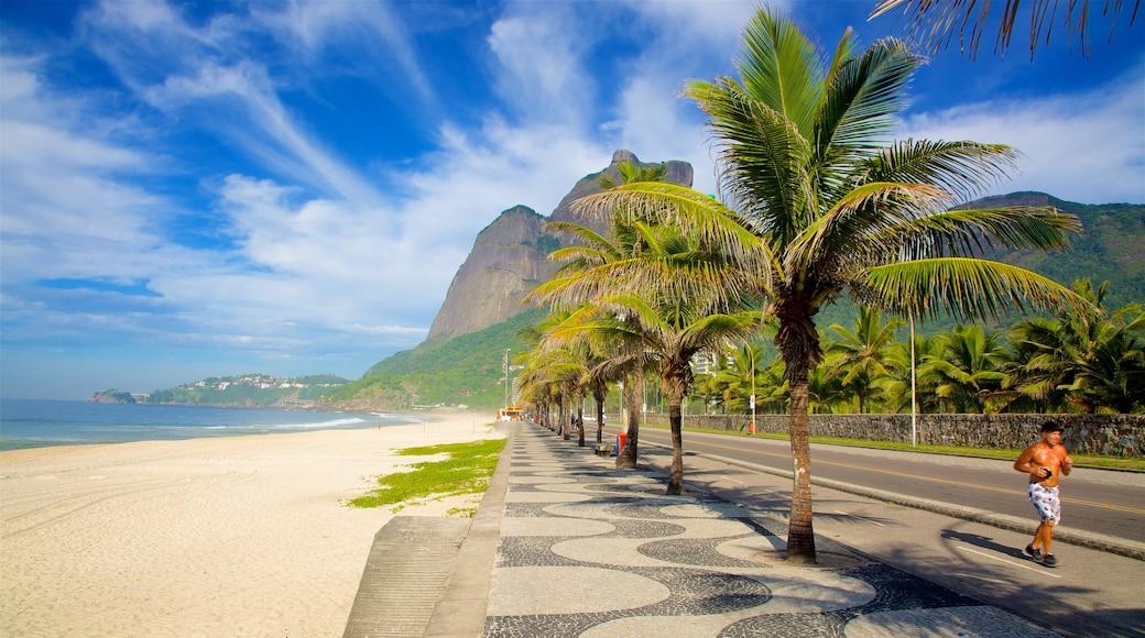 Avenida Atlântica ofreciendo escenas tropicales, una playa de arena y vista general a la costa