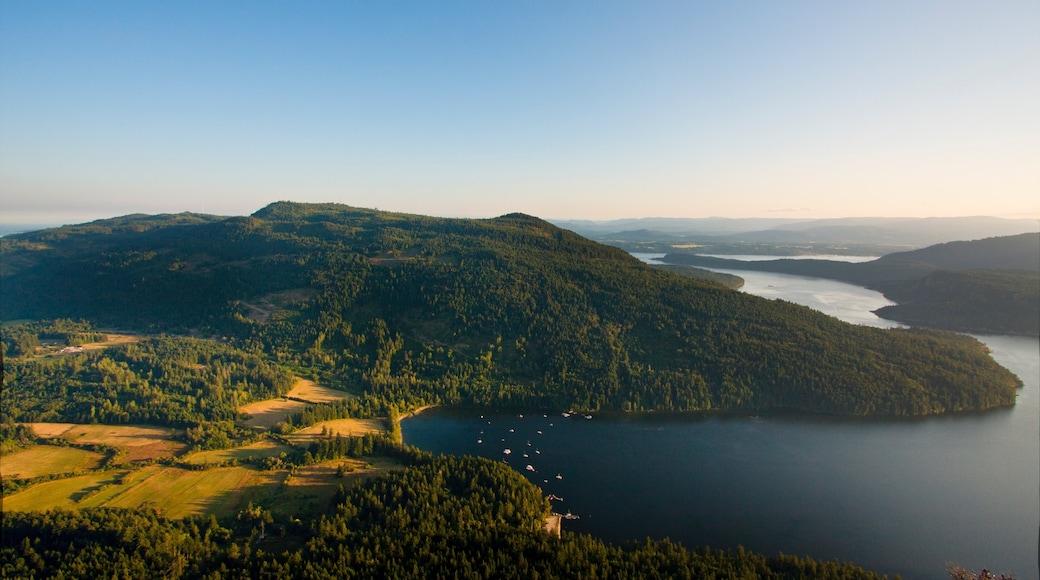 鹽泉島 呈现出 森林風景 和 湖泊或水池