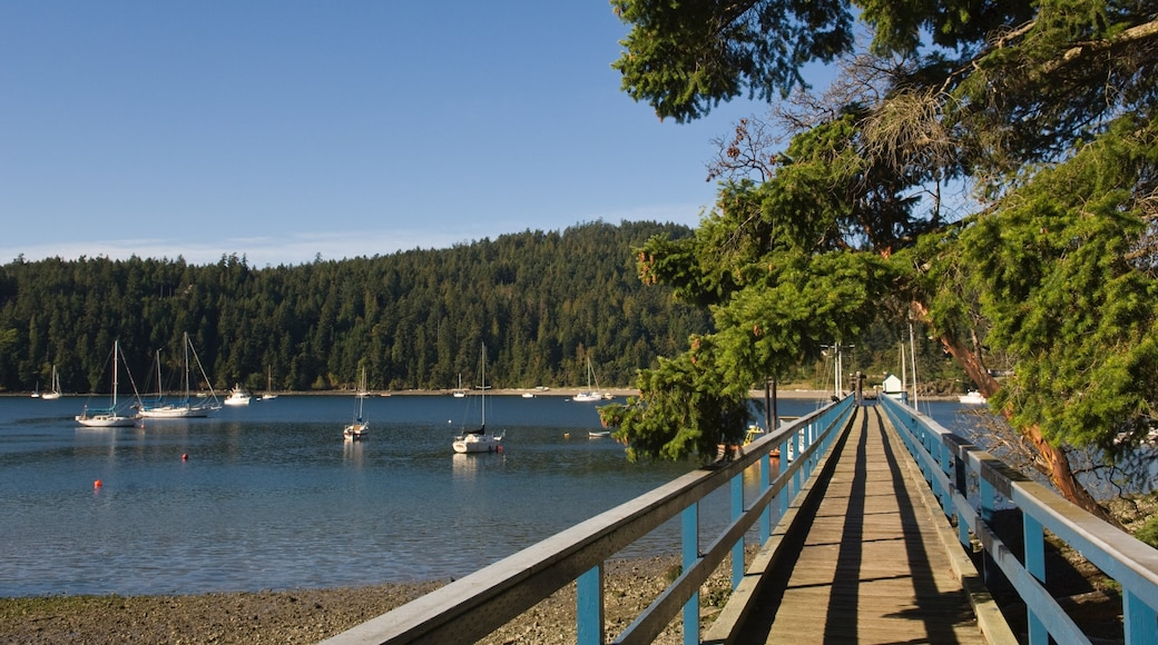 Pender Island featuring forests and a bay or harbour