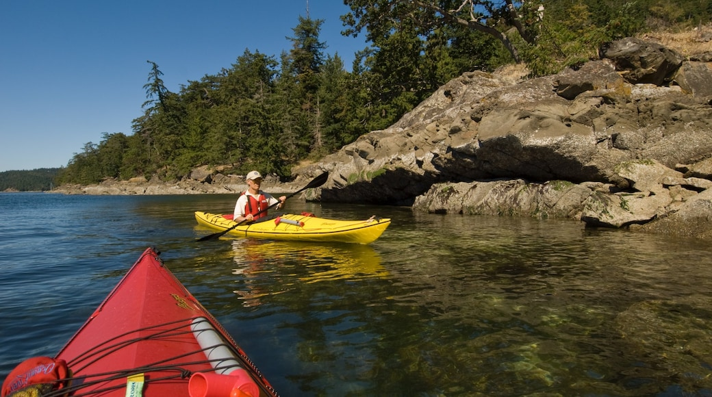 Pender Island showing rugged coastline, a bay or harbour and kayaking or canoeing