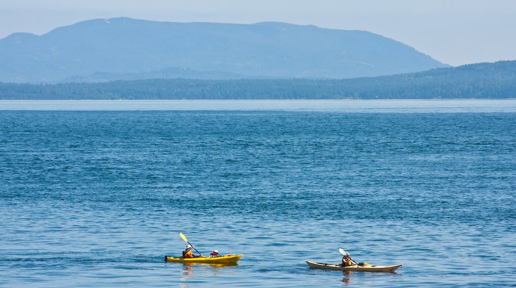 Pender Island showing a bay or harbour, island images and kayaking or canoeing